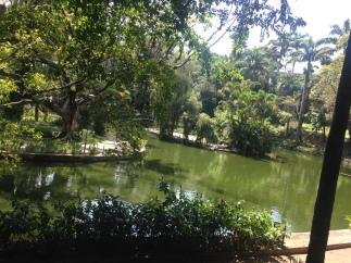Parque Municipal de Belo Horizonte-MG
