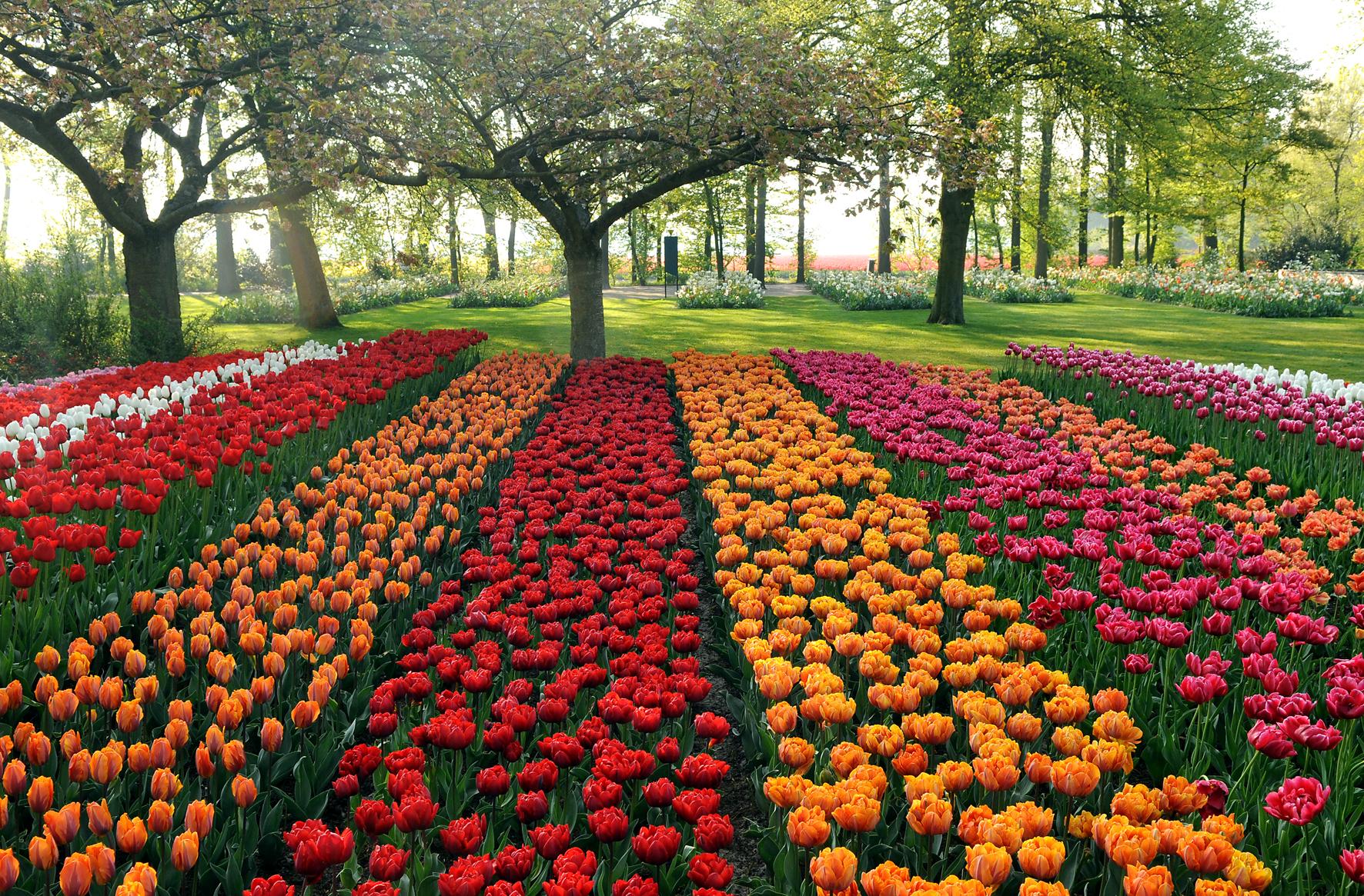 Primavera na Europa: 5 destinos para você se apaixonar.